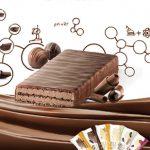 糖質制限におすすめプロテインバーBNRGパワークランチトリプルチョコレート味